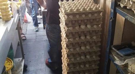 כואבת לכם הבטן? חלה עלייה בתחלואה בסלמונלה שמקורה בביצים. כיצד להיזהר?