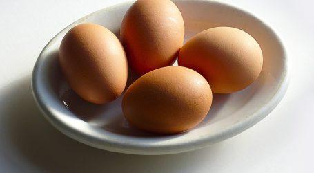 חשש לסלמונלה באלפי ביצים של יש מעוף