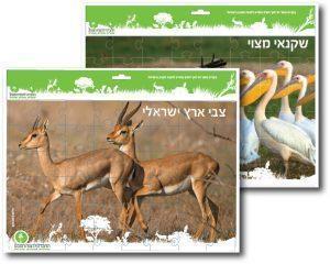 צבי ארץ ישראלי - פאזל של החברה להגנת הטבע
