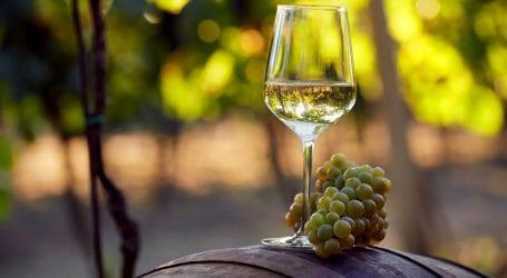 סוף עונת הענבים – 3 יינות מומלצים לסוף הקיץ הישראלי