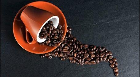 פולי קפה מומלצים לבית או לעסק