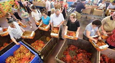 לקט ישראל: משפחה מפסידה 3,200 שקל בשנה עקב אובדן מזון, בעיקר ירקות ופירות