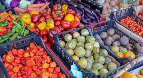 מחירי הירקות והפירות: למה הם כה יקרים ואיך תצמצמו את ההוצאה?