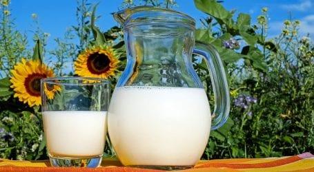 """אודי גוזלן: """"החלב מתייקר עקב הוראת בג""""ץ ותקופת 'אחרי החגים'"""""""