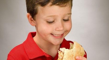 גבינה, נקניק או חביתה? לחמניה או פיתה? המדריך לכריכים לבית הספר