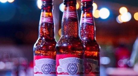 בירה באדווייזר מתחילה להימכר בישראל
