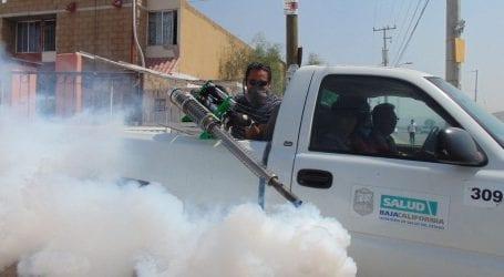 הדברת מזיקים אינה הדברה לקורונה – כך מדגיש המשרד להגנת הסביבה