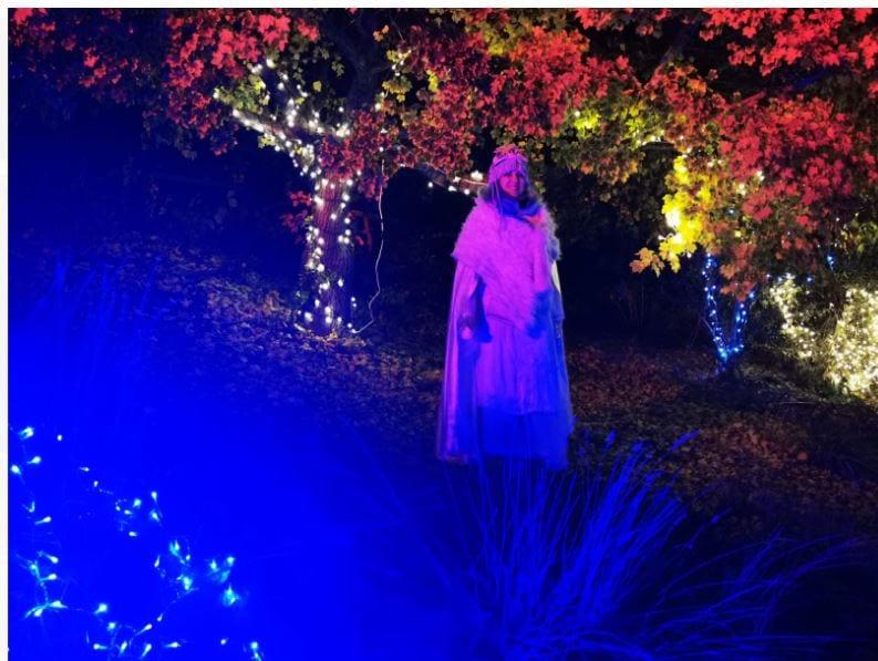 אמנית ב-WINTER LIGHTS בגן הבוטני