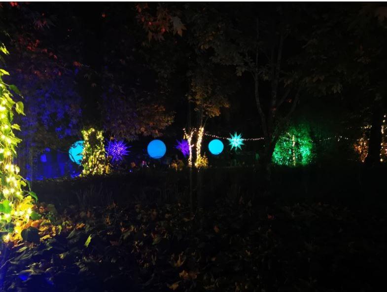 אורות ב-WINTER LIGHTS בגן הבוטני
