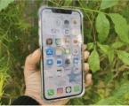 אייפון 12 – מצלמות מעולות, אבל שווה לשדרג? בדקנו את הסוללה, המסך והביצועים